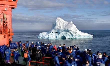Ghiaccio, orsi bianchi e altre meraviglie in estinzione. Mettere i piedi sul Polo Nord è ormai una gita per famiglie (molto ricche)