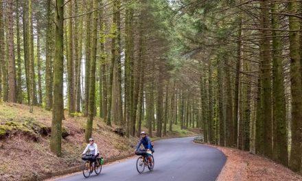 In Calabria una pedalata da oscar: da Laino Borgo a Morano Calabro