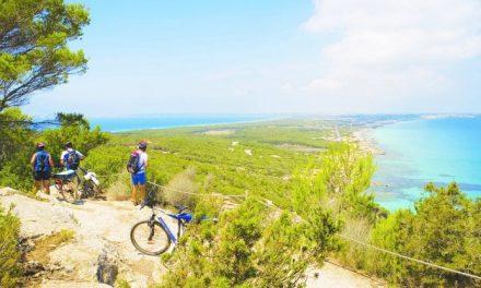 Formentera: l'anima verde della più piccola delle Baleari, tra posidonia, birdwatching e trekking