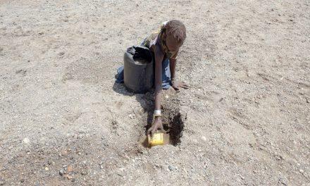 """Fondazione Bill & Melinda Gates: """"In arrivo un'enorme crisi agricola e umanitaria. Servono più fondi"""""""