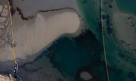 California: in mare 500mila litri di petrolio, disastro ambientale nel paradiso dei surfisti