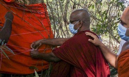 """I monaci buddisti salvano l'ultimo esemplare di legume dello Sri Lanka: """"L'autostrada cambierà percorso"""""""