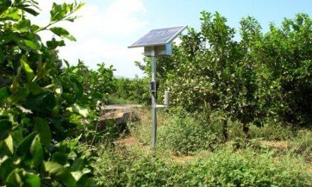 SmartIsland,  arrivano dalla Sicilia i robot agronomi che aiutano nei campi